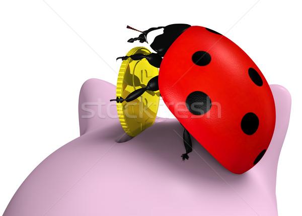 Uğur böceği sikke uğur böceği üst kumbara Stok fotoğraf © TaiChesco