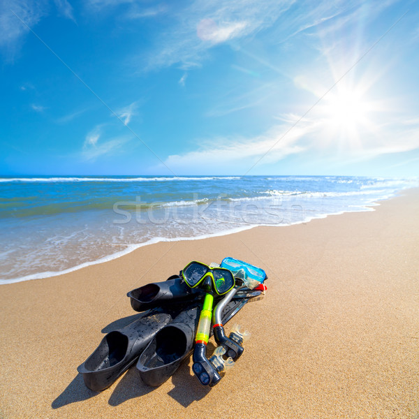 Equipment for Diving on the sea beach with blue sky and sun Stock photo © Taiga