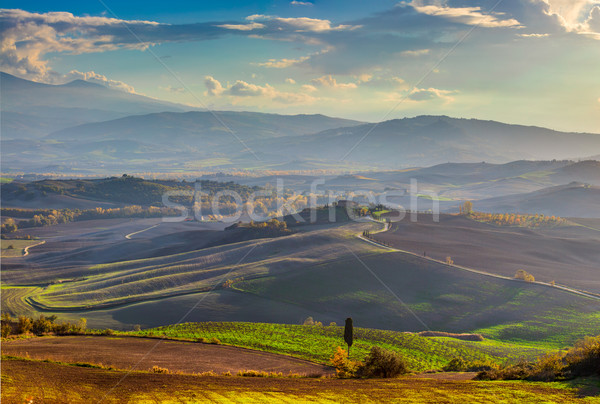 Panoramic view of Beautiful Valley in the morning landscape Stock photo © Taiga
