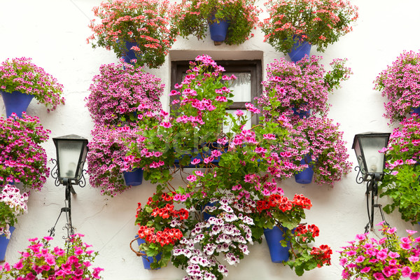 Typical Window decorated Pink and Red Flowers,  Spain, Mediterra Stock photo © Taiga