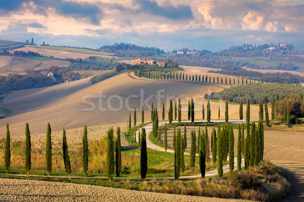 Manzara Toskana doğa kırsal İtalya tepeler Stok fotoğraf © Taiga