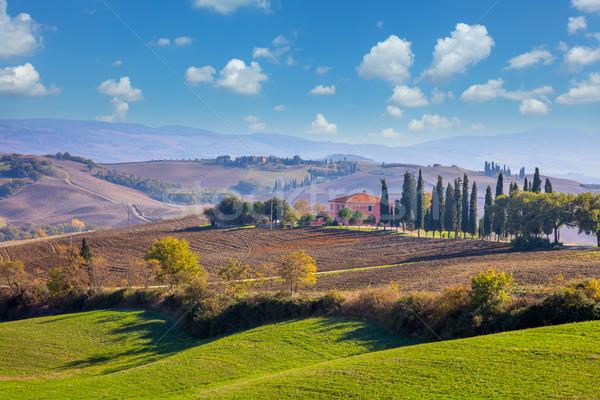 Foto stock: Toscana · paisagem · belo · hills · campos