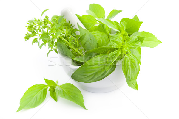 Fresh herbs whith mortar and pestle / isolated on white Stock photo © Taiga