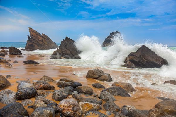 Oceaan strand landschap groot golven wal Stockfoto © Taiga