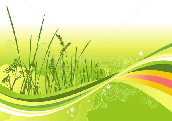 grass, flowers and abstract lines background / vector Stock photo © Taiga
