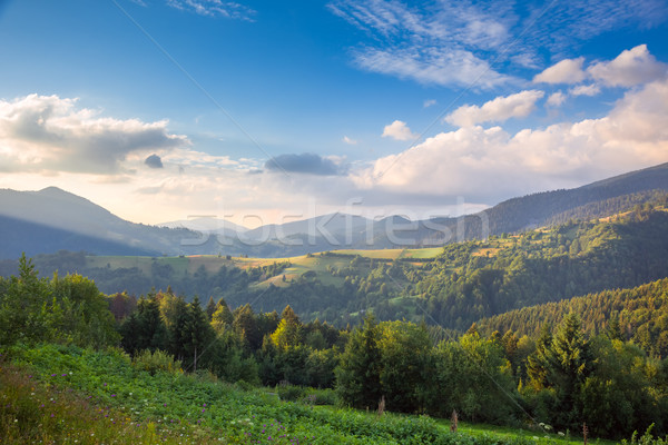 Summer day in The Mountain Valley Stock photo © Taiga