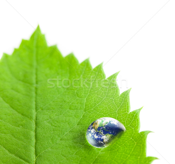 Earth into Big Water Drop on a Green Leaf  / white background Stock photo © Taiga