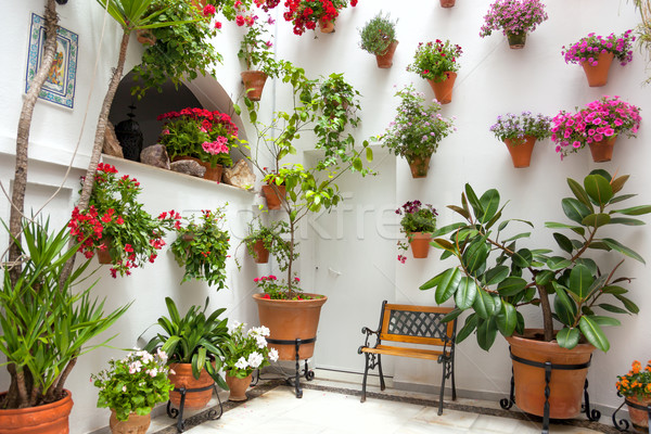Lentebloemen decoratie oude huis Spanje Europa patio Stockfoto © Taiga