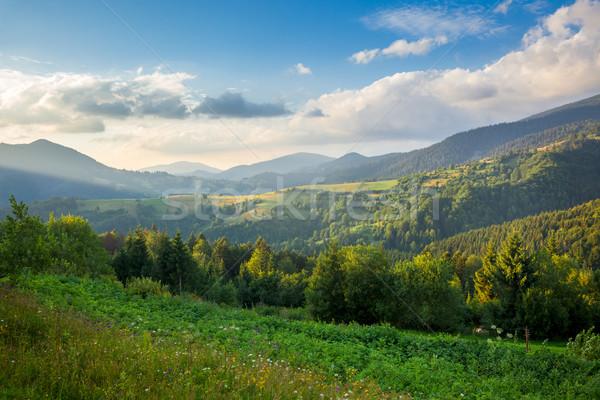Beautiful  Mountain Valley in summer Stock photo © Taiga