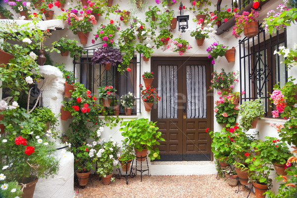 Flowers Decoration of Vintage Courtyard,  Spain, Europe Stock photo © Taiga