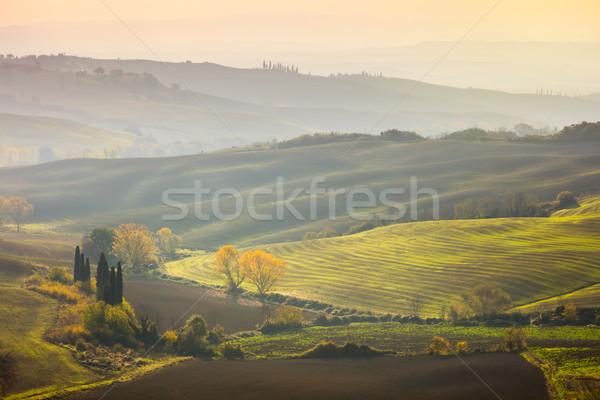Stockfoto: Natuurlijke · zonnige · najaar · landschap · golvend · velden
