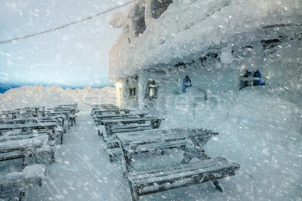 Veszélyes tél időjárás éjszaka hó hóvihar Stock fotó © Taiga