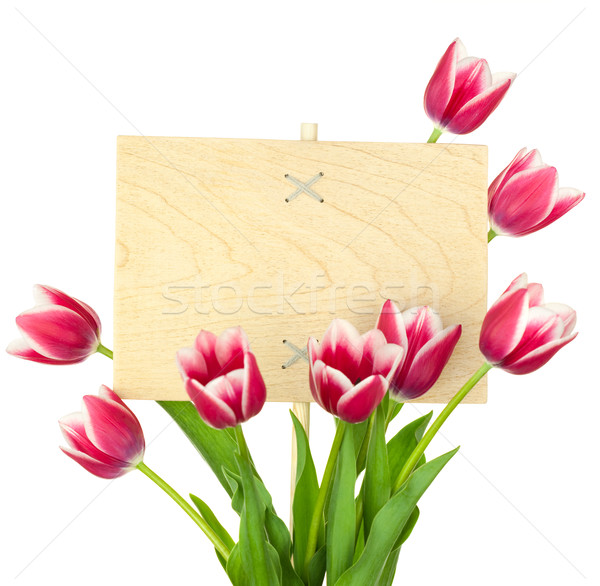 Beautiful Tulips and Empty Sign for text / wooden panel / isolat Stock photo © Taiga