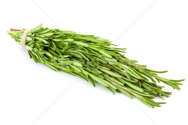 Bunch of fresh Rosemary  /  isolated on white  Stock photo © Taiga