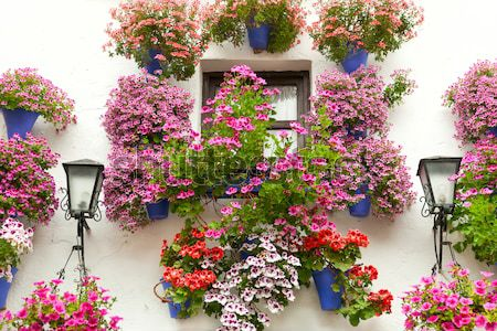 Mediterranean Window decorated Flowers and Lanterns, Spain,  Eur Stock photo © Taiga