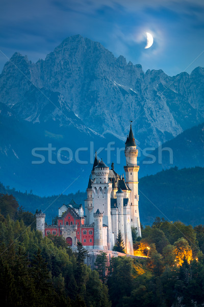 Famous Neuschwanstein Castle at night with moon and illumination Stock photo © Taiga