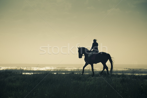 A Rider Silhouette on Horseback / split toned / retro style Stock photo © Taiga