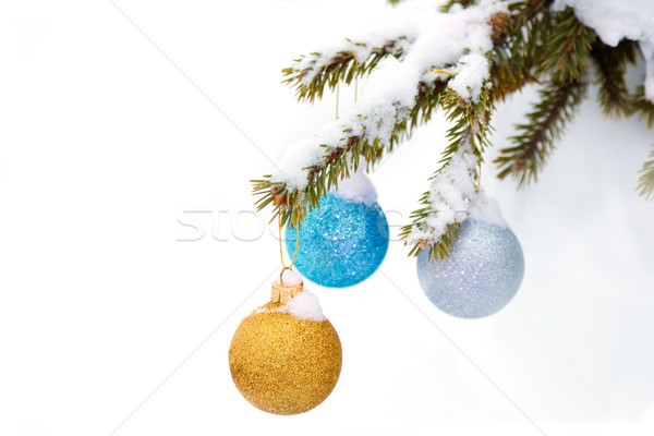 Christmas sparkle baubles on a pine branch in a snowy forest Stock photo © Taiga