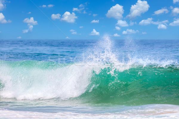 Beautiful Waves in the warm Sea Water, Summer Stock photo © Taiga