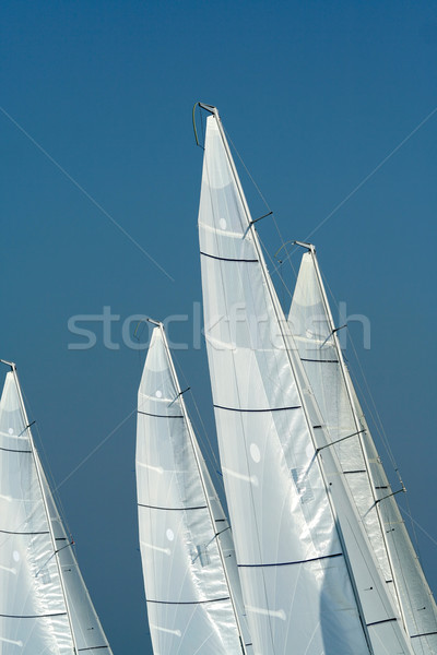 Sailing in Good Wind / sails background Stock photo © Taiga