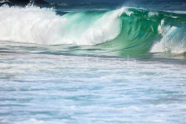 большой бурный океана волны красочный морем Сток-фото © Taiga