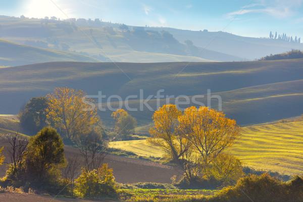 Солнечный осень сельского хозяйства пейзаж Тоскана Осенний сезон Сток-фото © Taiga