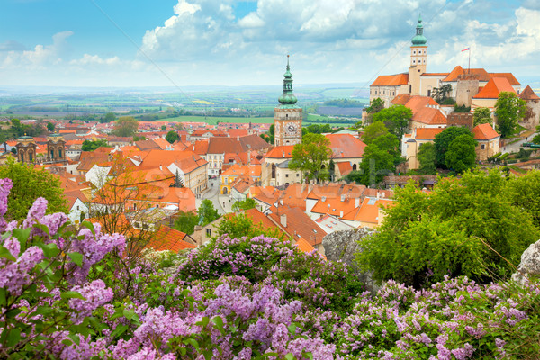 Old European Town with castle, clock and flowers Stock photo © Taiga