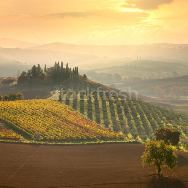 Beautiful rural landscape - Tuscany, Italy Stock photo © Taiga