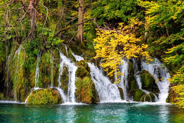 Nature landscape - Group of waterfalls in colorful forest Stock photo © Taiga
