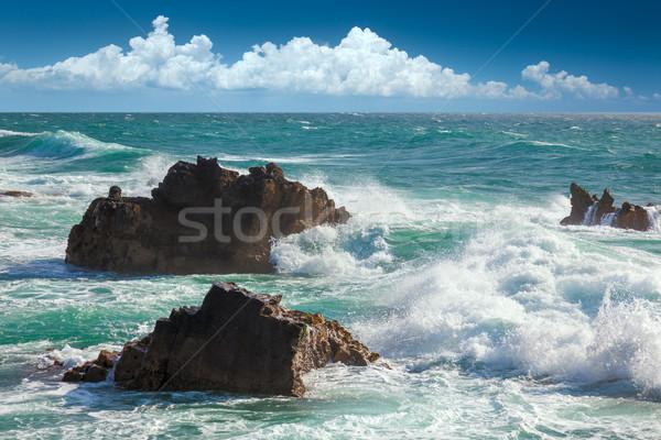 Mooie turkoois oceaan golven rotsen kustlijn Stockfoto © Taiga
