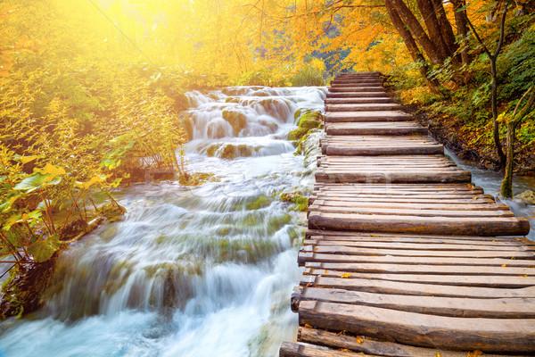 Cênico cachoeiras caminho pitoresco outono Foto stock © Taiga