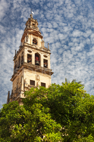 Bell Tower (Torre de Alminar) of the Mezquita Cathedral (The Gre Stock photo © Taiga