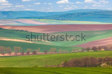 Napos Toszkána tájkép gyönyörű dombok égbolt Stock fotó © Taiga