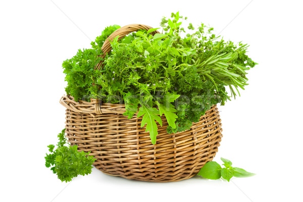 Collection of Fresh Spicy Herbs in Basket / isolated Stock photo © Taiga
