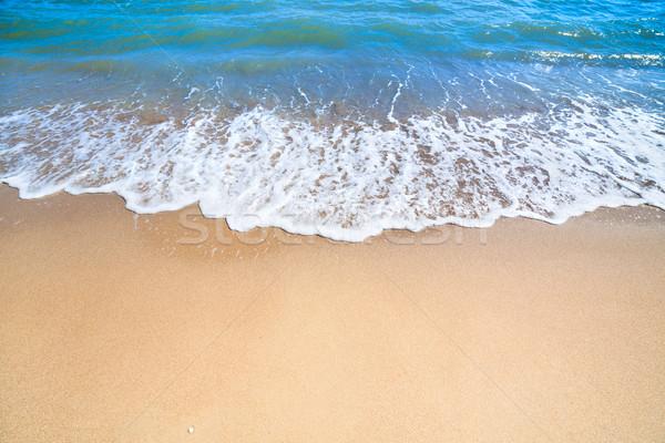 Zomer zee oceaan strand zacht surfen Stockfoto © Taiga