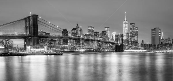 Köprü Manhattan New York panoramik görmek düşük Stok fotoğraf © Taiga