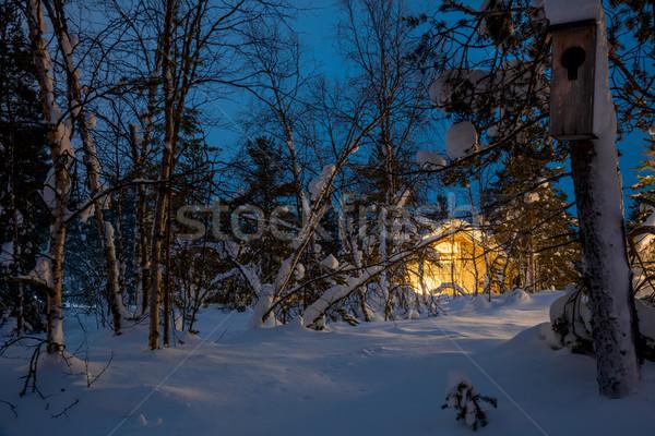 Zdjęcia stock: Zimą · niebieski · noc · krajobraz · ciepły