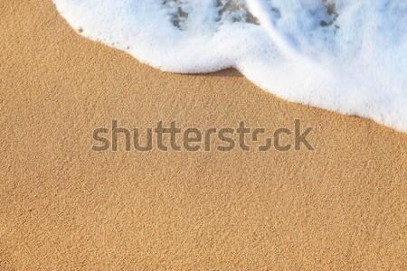 Zachte golf zee zandstrand strand water Stockfoto © Taiga