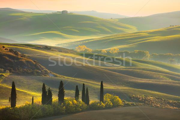 świeże zielone Toskania krajobraz wiosną czasu Zdjęcia stock © Taiga