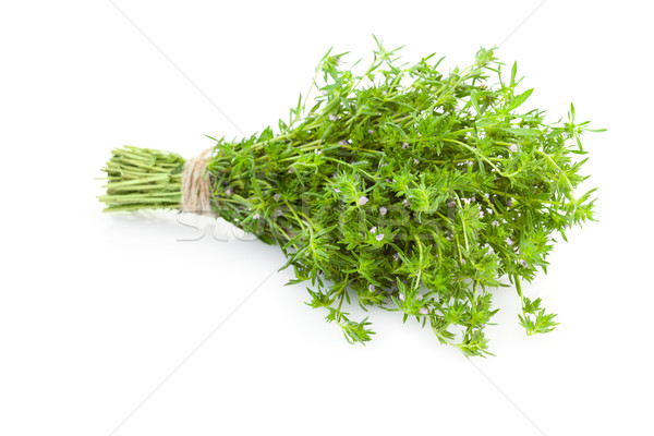 Bunch of fresh Thyme herbs /  isolated on white  Stock photo © Taiga