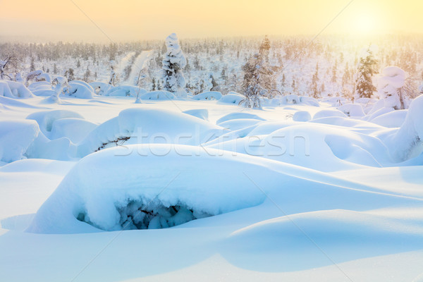Amazing Arctic winter landscape Stock photo © Taiga