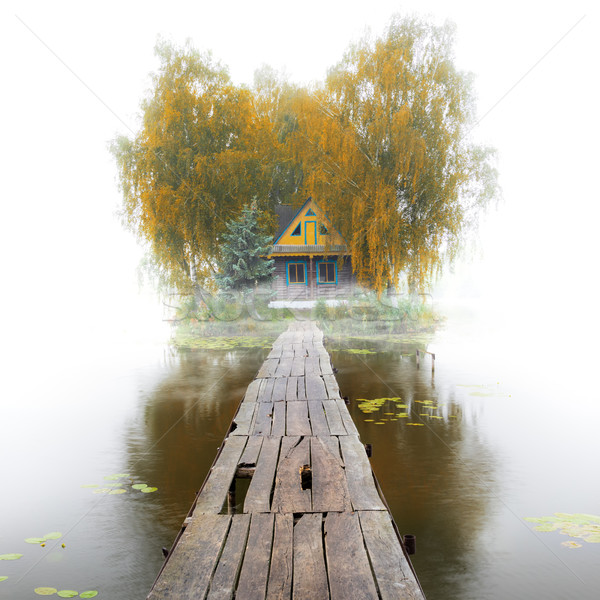 Old wooden house on the lake, foggy autumn morning Stock photo © Taiga