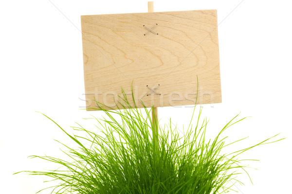 Lege groen gras geïsoleerd witte vers Stockfoto © Taiga