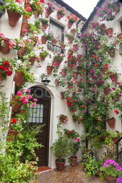 Flowers Decoration of Courtyard, typical house in Spain, Europe Stock photo © Taiga