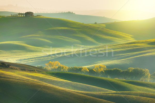Sunny Morning Tuscany landscape with beautiful hills Stock photo © Taiga