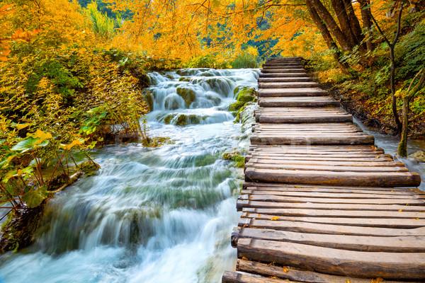 Scenico cascate legno percorso pittoresco Foto d'archivio © Taiga