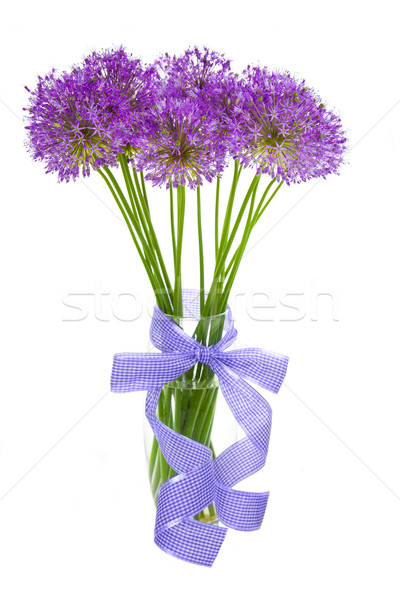 Bouqet of Allium / isolated on white Stock photo © Taiga
