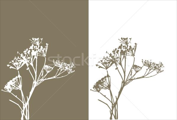grass  silhouette / vector Stock photo © Taiga