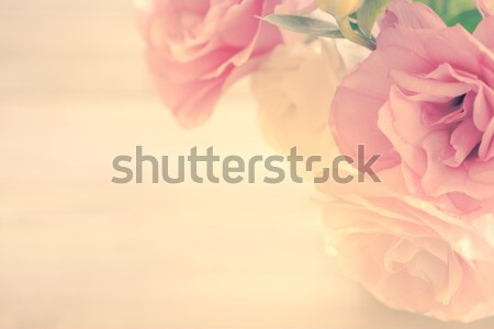 Vintage Floral Background with gentle pink flowers  Stock photo © Taiga