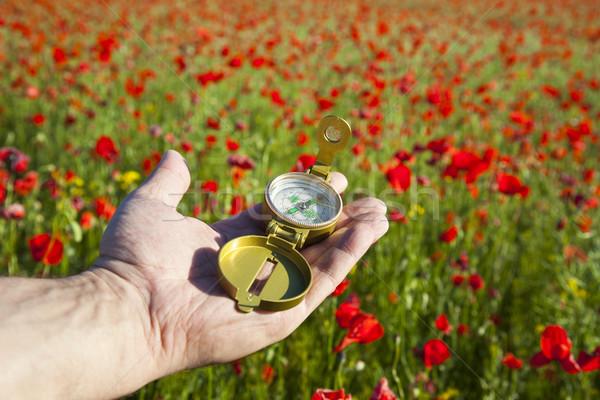 Kompas hand ontdekking mooie dag Rood Stockfoto © Taiga